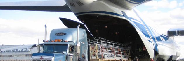 Fleet Size & Characteristics